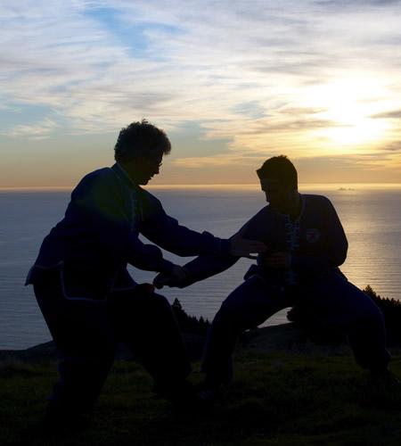 Private lessons in Tai Chi, Northern Shaolin, Xing Yi Quan or Qigong with Sifu Scott Jensen