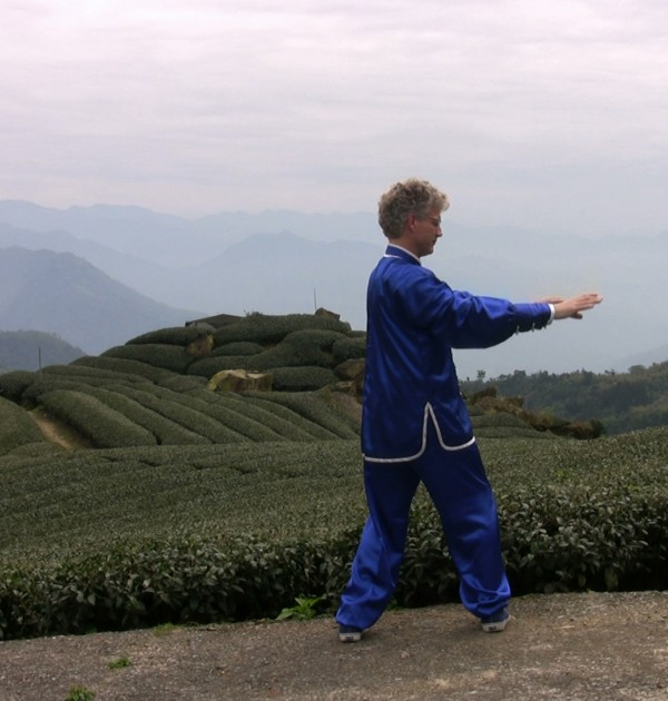 Qi Gong Lessons Sample Screen Shot from the Taiwan Mountaintop Tea Farm.