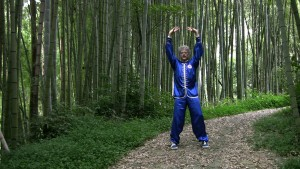 Qi Gong Lesson in Taiwan Bamboo Forest with Scott Jensen Screen Shot