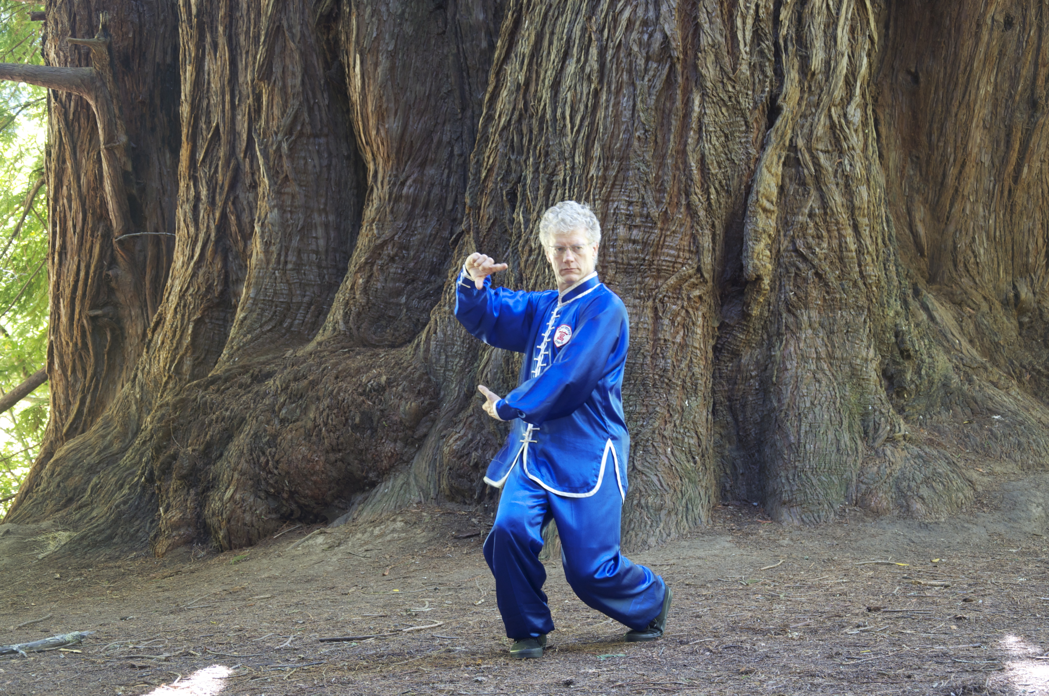 learn Xing Yi Quan in San Anselmo and San Rafael California.