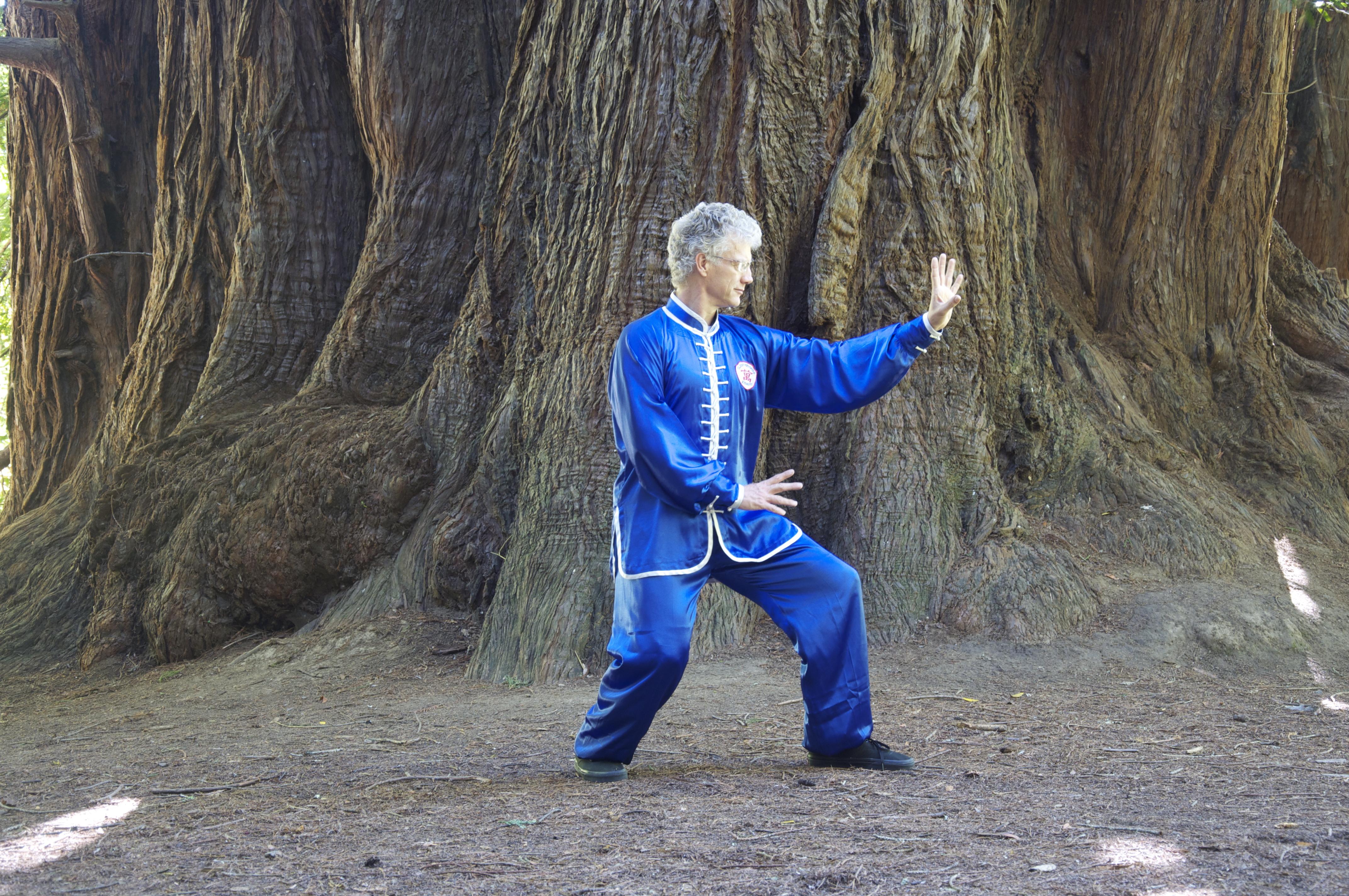 Scott Jensen teaches Xing Yi Quan in Marin county CA.