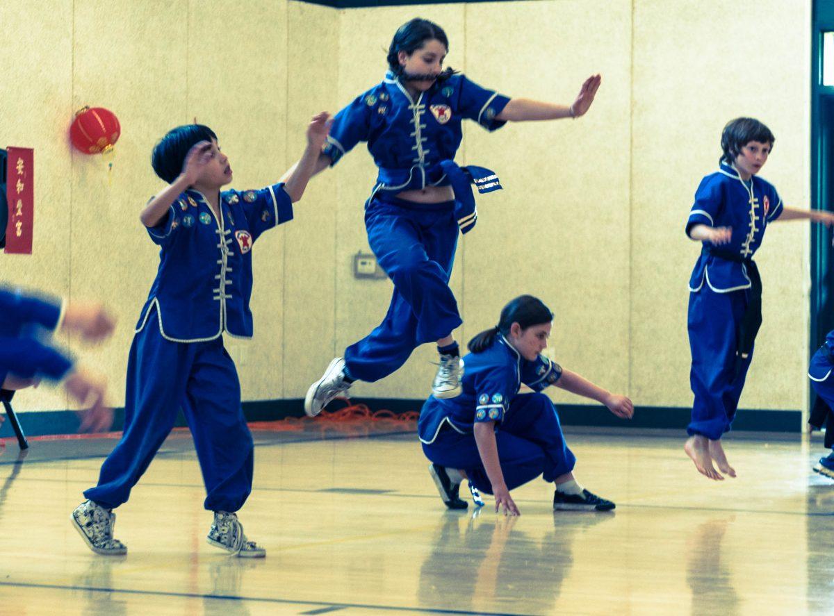 Kung Fu Animal Power for Kids Fall Animal Round Up !