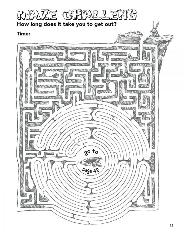 The Rabbit Fu Book has the most amazing mazes fo any Fu Book!
