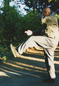 Liang Ke Quan's Xing Yi Quan Dragon Kick