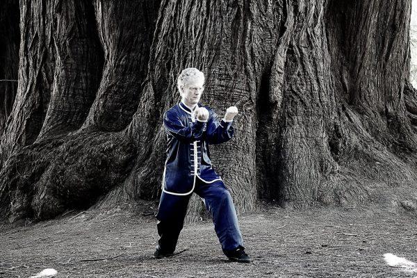 Xing Yi Quan Falcon