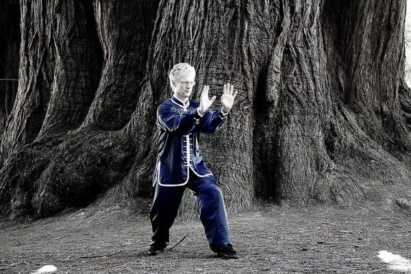 Xing Yi Quan Tiger