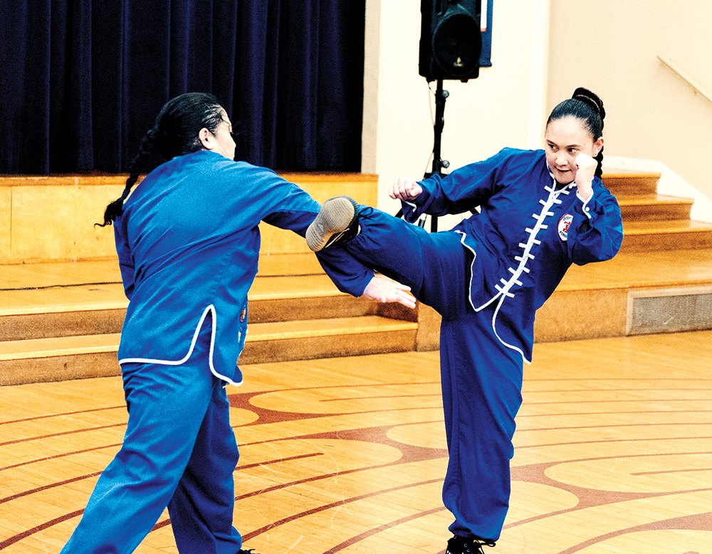 Northern Shaolin Sparring Form