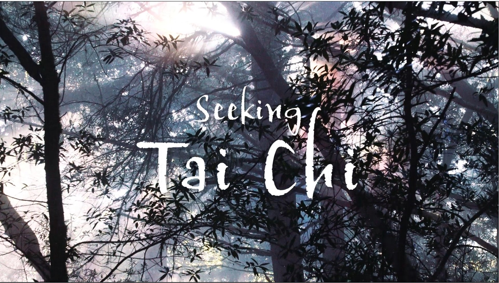 Image for seeking Tai Chi video about Tai Chi Student Success at 10,000 Victories in Marin County.